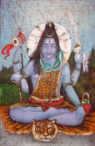 Yogi Shiva